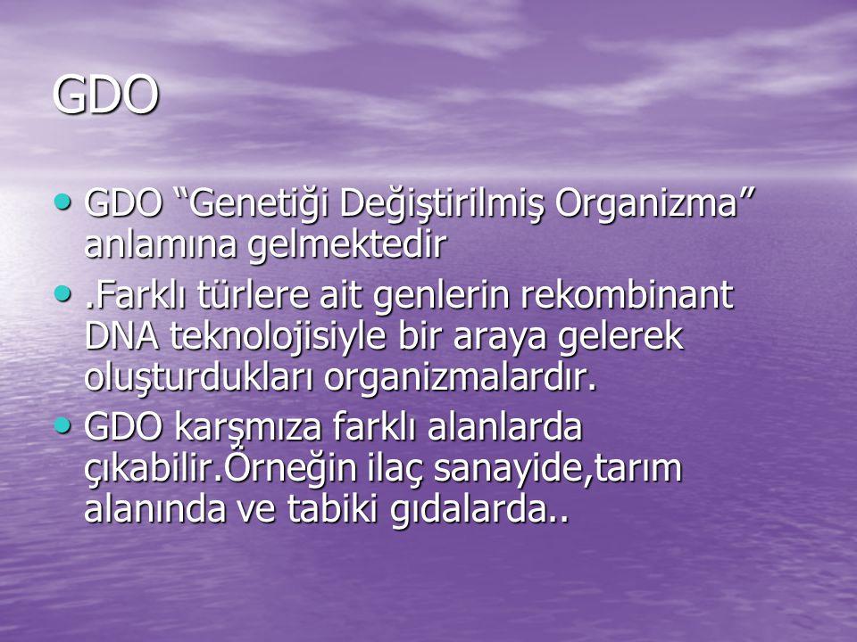 """GDO GDO """"Genetiği Değiştirilmiş Organizma"""" anlamına gelmektedir GDO """"Genetiği Değiştirilmiş Organizma"""" anlamına gelmektedir.Farklı türlere ait genleri"""
