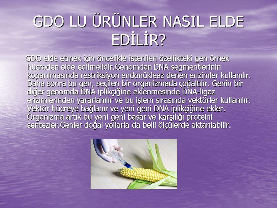 GDO NUN YARARLARI Gen aktarımı ile ürünler daha kaliteli hale getirilebilir ve daha fazla verim elde edilebilir.