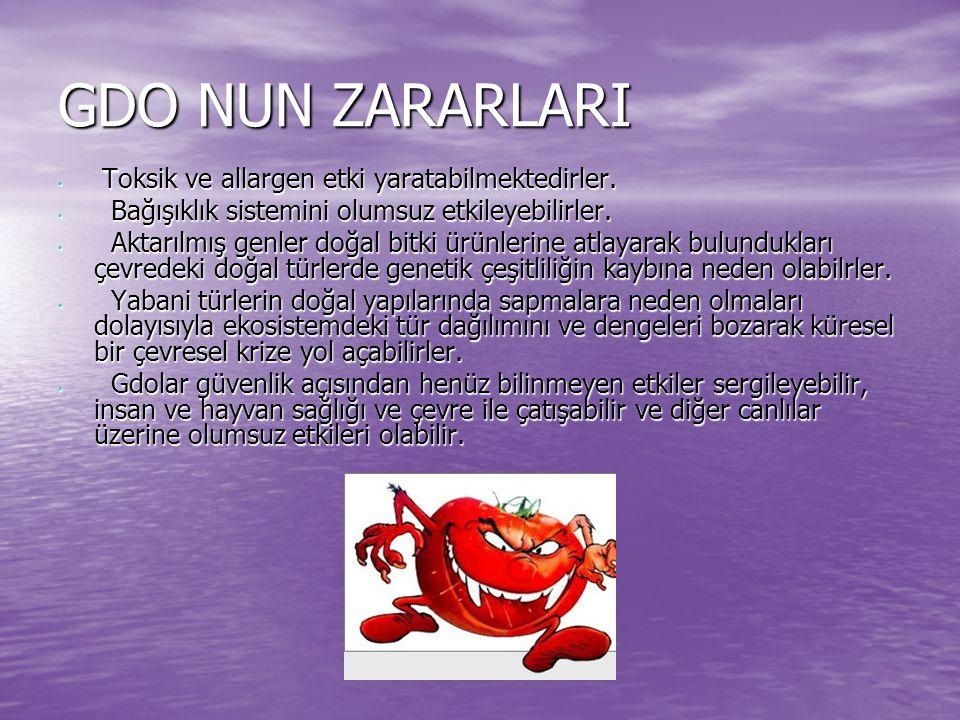 GDO NUN ZARARLARI Toksik ve allargen etki yaratabilmektedirler. Toksik ve allargen etki yaratabilmektedirler. Bağışıklık sistemini olumsuz etkileyebil