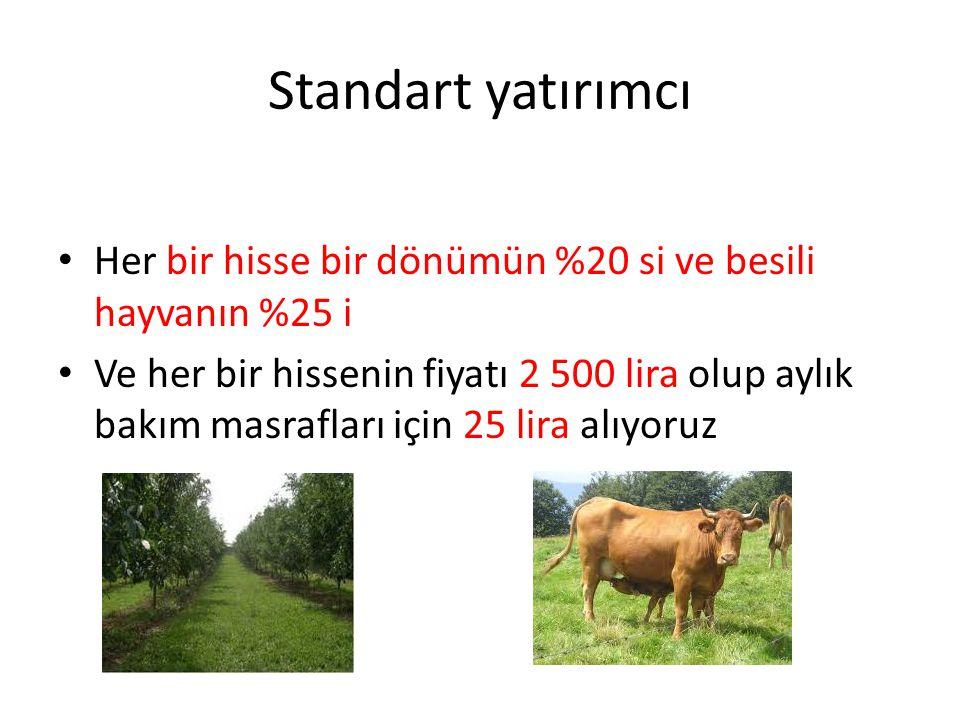 Standart yatırımcı Her bir hisse bir dönümün %20 si ve besili hayvanın %25 i Ve her bir hissenin fiyatı 2 500 lira olup aylık bakım masrafları için 25 lira alıyoruz