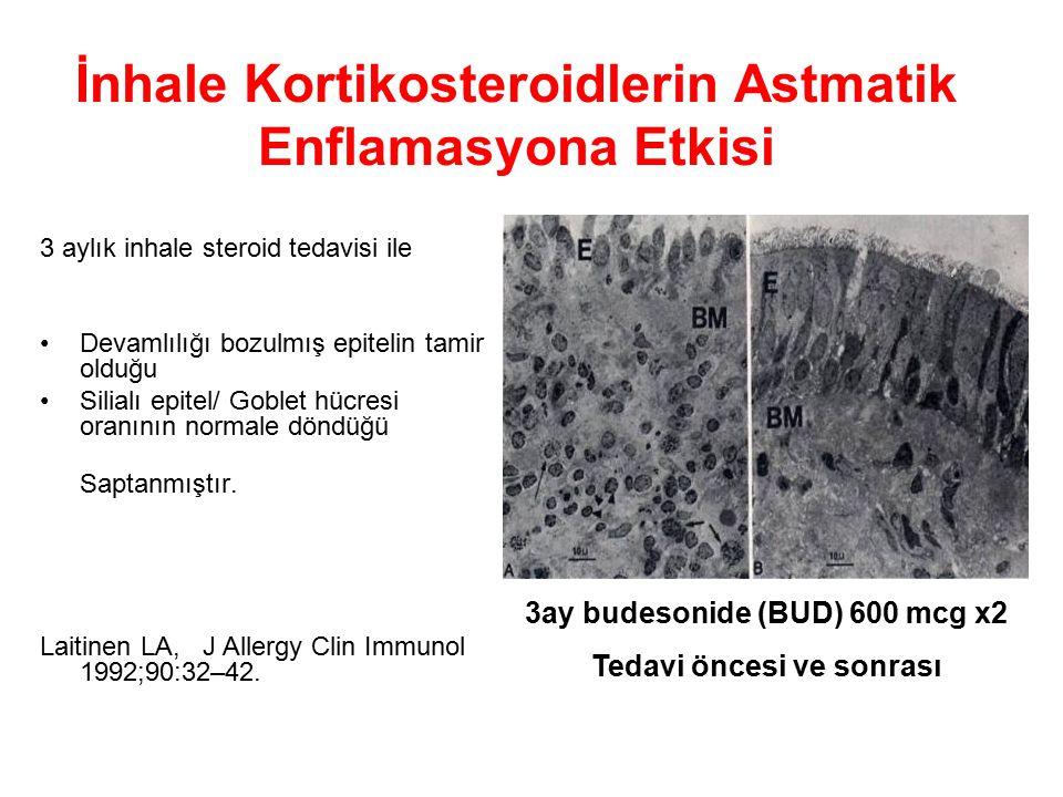 3 aylık inhale steroid tedavisi ile Devamlılığı bozulmış epitelin tamir olduğu Silialı epitel/ Goblet hücresi oranının normale döndüğü Saptanmıştır.