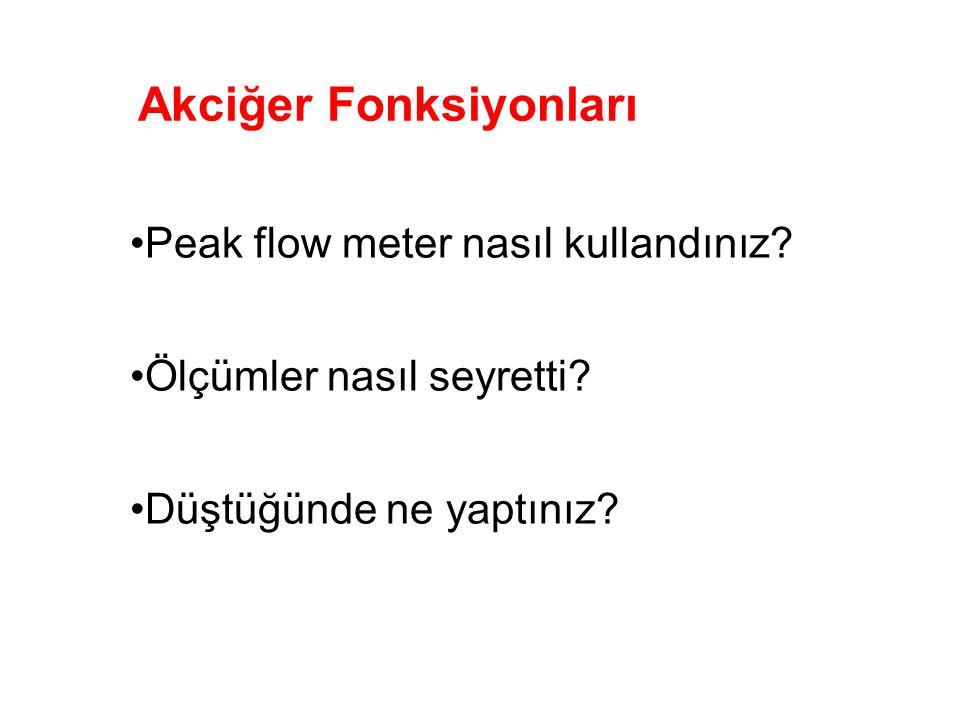 Akciğer Fonksiyonları Peak flow meter nasıl kullandınız.