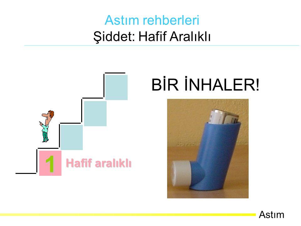 Nemli ortamda su tutabildiğinden dışarı nefes verirken cihaz ağızdan uzaklaştırılmalıdır.