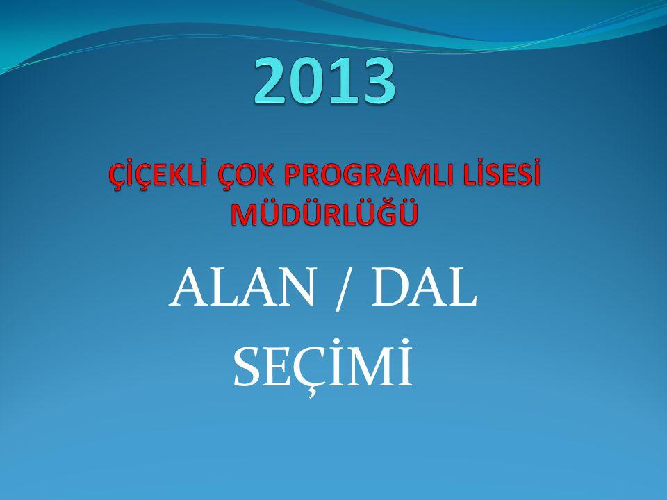 ALAN / DAL SEÇİMİ