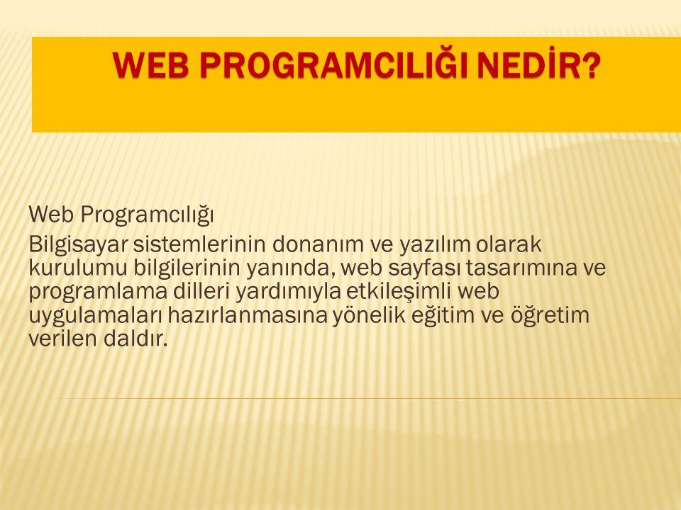 Web Programcılığı Bilgisayar sistemlerinin donanım ve yazılım olarak kurulumu bilgilerinin yanında, web sayfası tasarımına ve programlama dilleri yard