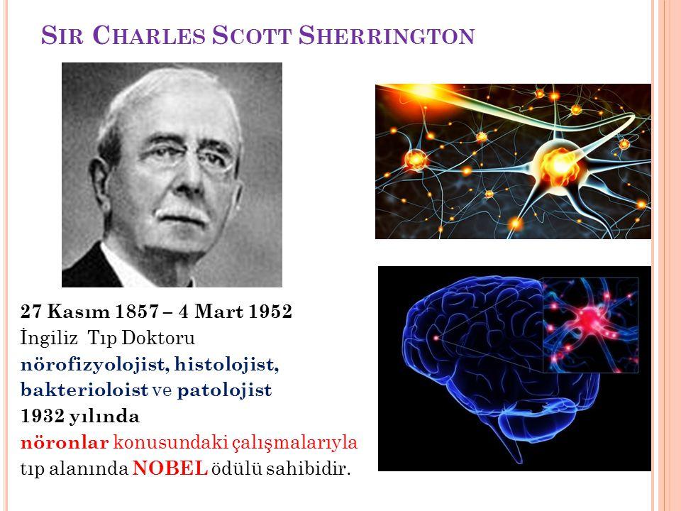 S IR C HARLES S COTT S HERRINGTON 27 Kasım 1857 – 4 Mart 1952 İngiliz Tıp Doktoru nörofizyolojist, histolojist, bakterioloist ve patolojist 1932 yılında nöronlar konusundaki çalışmalarıyla tıp alanında NOBEL ödülü sahibidir.