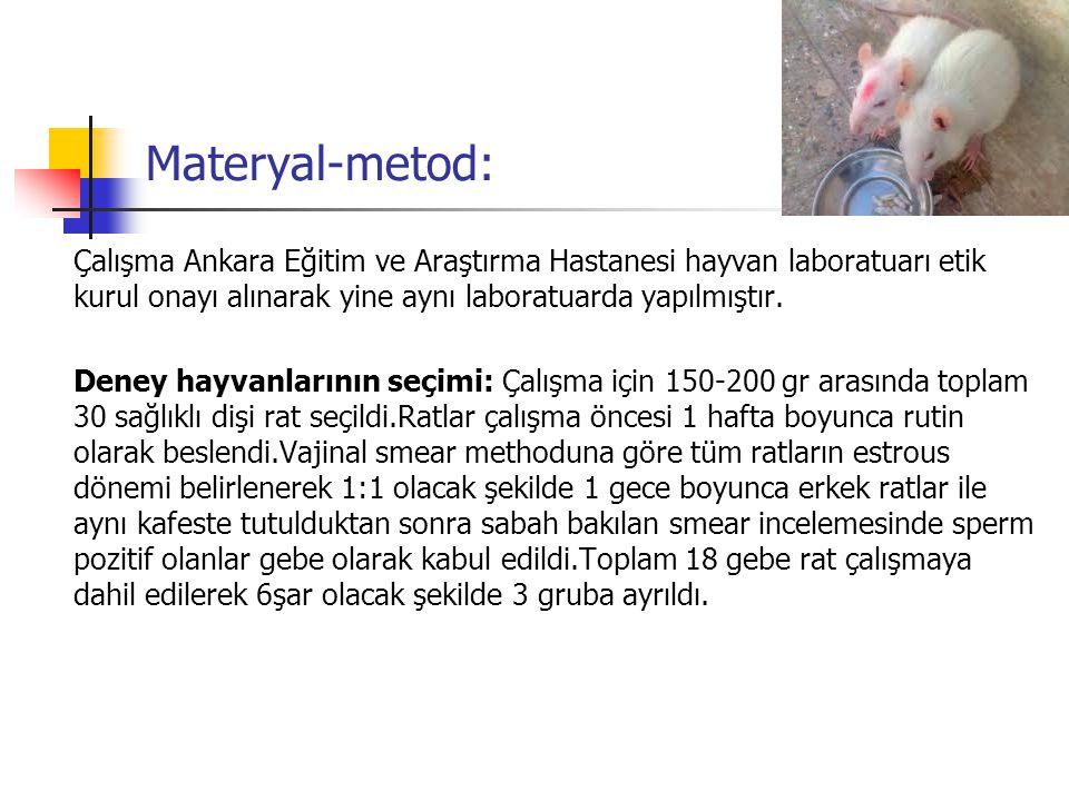Materyal-metod: Çalışma Ankara Eğitim ve Araştırma Hastanesi hayvan laboratuarı etik kurul onayı alınarak yine aynı laboratuarda yapılmıştır. Deney ha