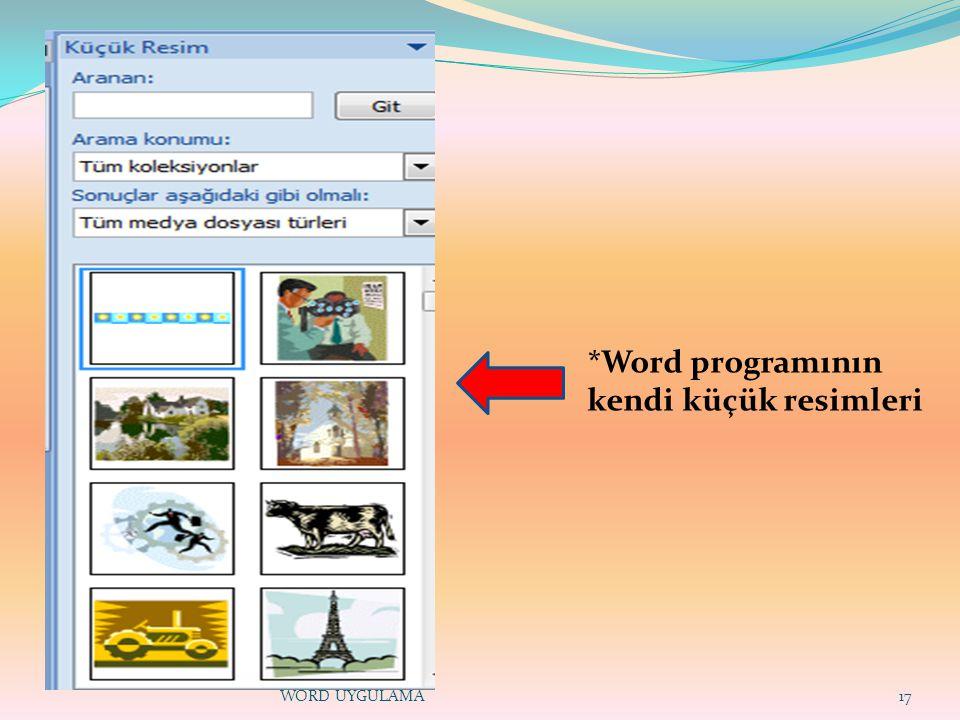 17 *Word programının kendi küçük resimleri WORD UYGULAMA
