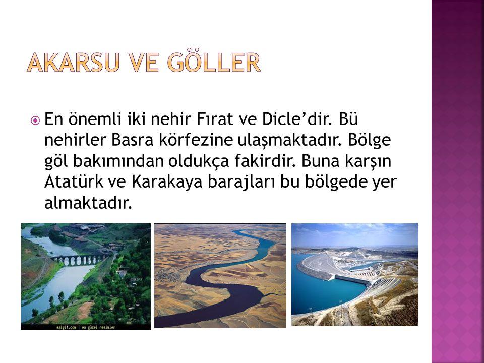  En önemli iki nehir Fırat ve Dicle'dir. Bü nehirler Basra körfezine ulaşmaktadır. Bölge göl bakımından oldukça fakirdir. Buna karşın Atatürk ve Kara
