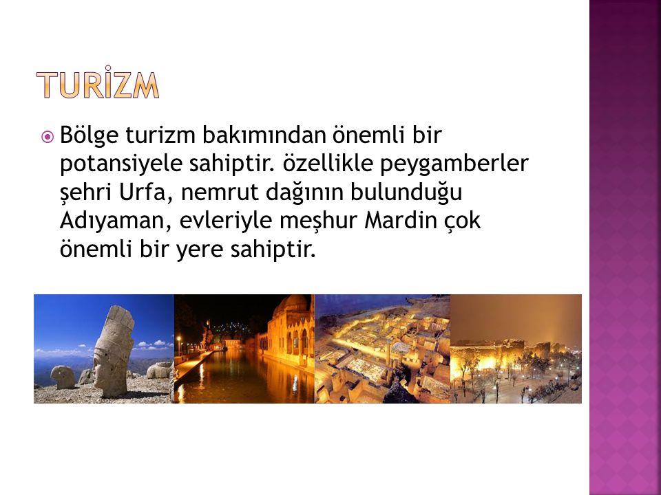  Bölge turizm bakımından önemli bir potansiyele sahiptir. özellikle peygamberler şehri Urfa, nemrut dağının bulunduğu Adıyaman, evleriyle meşhur Mard