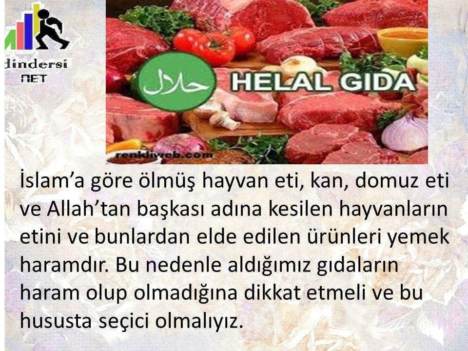 İslam'a göre ölmüş hayvan eti, kan, domuz eti ve Allah'tan başkası adına kesilen hayvanların etini ve bunlardan elde edilen ürünleri yemek haramdır. B