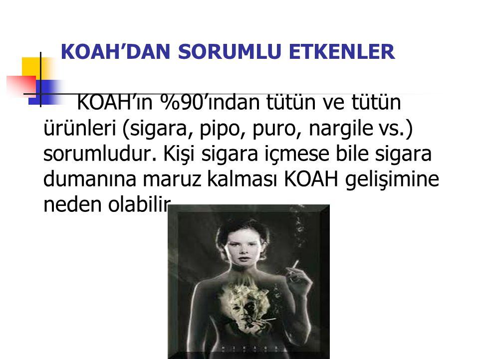 KOAH'DAN SORUMLU ETKENLER KOAH'ın %90'ından tütün ve tütün ürünleri (sigara, pipo, puro, nargile vs.) sorumludur.