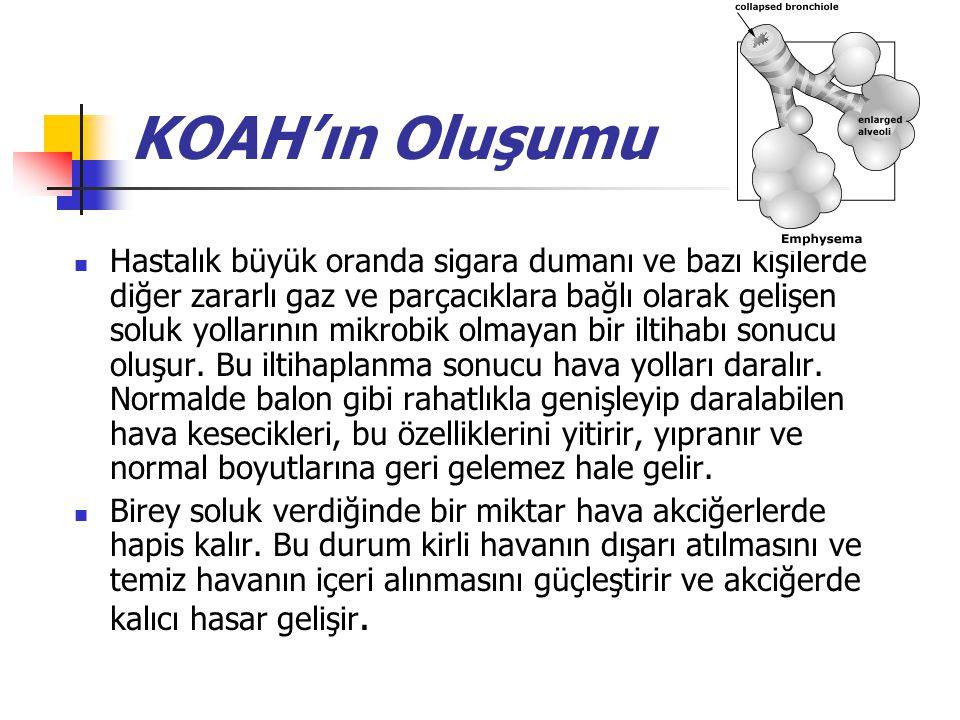 KOAH'ın Oluşumu Hastalık büyük oranda sigara dumanı ve bazı kişilerde diğer zararlı gaz ve parçacıklara bağlı olarak gelişen soluk yollarının mikrobik olmayan bir iltihabı sonucu oluşur.