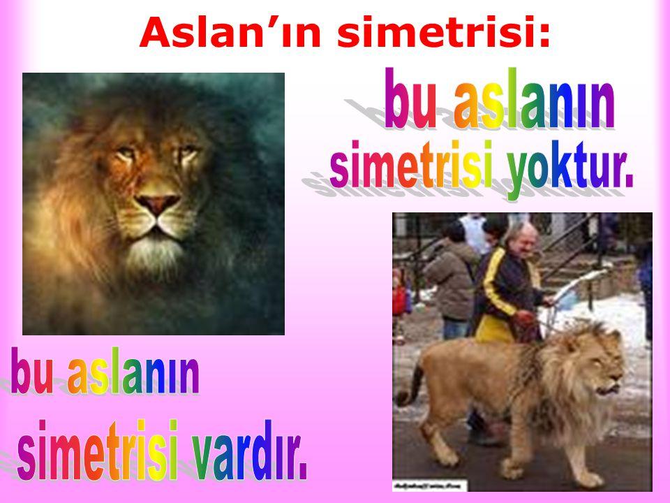 Aslan'ın simetrisi: