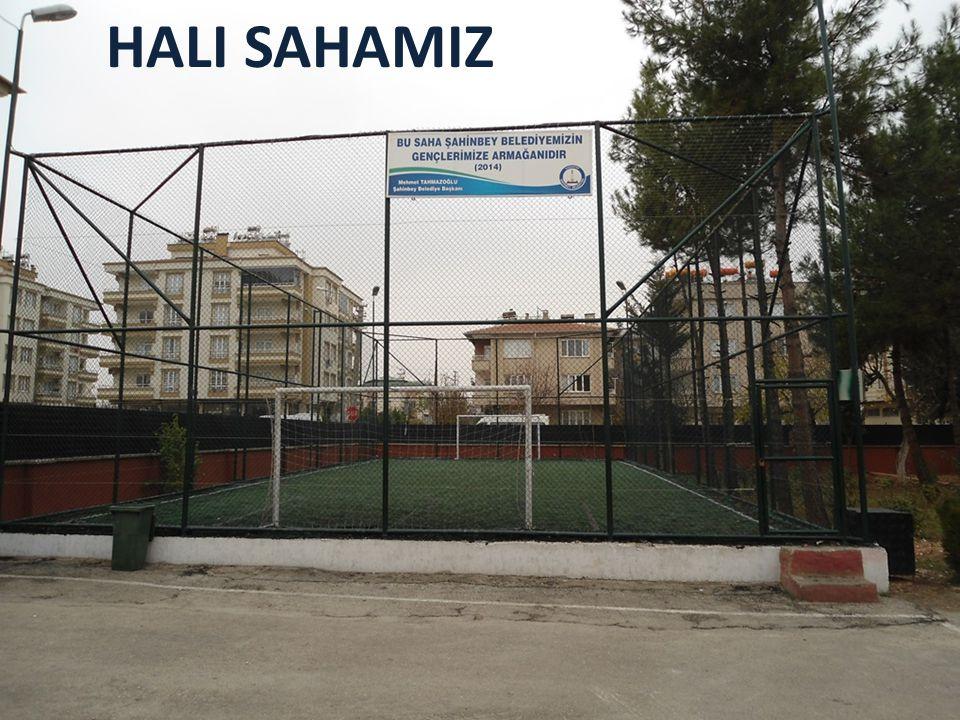 HALI SAHAMIZ