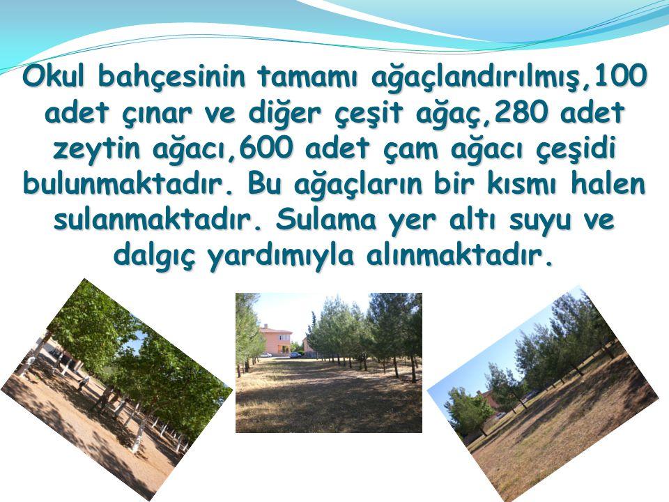 Okul bahçesinin tamamı ağaçlandırılmış,100 adet çınar ve diğer çeşit ağaç,280 adet zeytin ağacı,600 adet çam ağacı çeşidi bulunmaktadır. Bu ağaçların