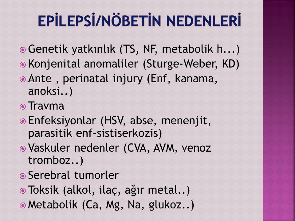 Genetik yatkınlık (TS, NF, metabolik h...)  Konjenital anomaliler (Sturge-Weber, KD)  Ante, perinatal injury (Enf, kanama, anoksi..)  Travma  Enfeksiyonlar (HSV, abse, menenjit, parasitik enf-sistiserkozis)  Vaskuler nedenler (CVA, AVM, venoz tromboz..)  Serebral tumorler  Toksik (alkol, ilaç, ağır metal..)  Metabolik (Ca, Mg, Na, glukoz..)