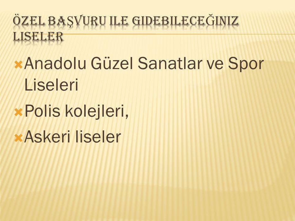  Anadolu Güzel Sanatlar ve Spor Liseleri  Polis kolejleri,  Askeri liseler