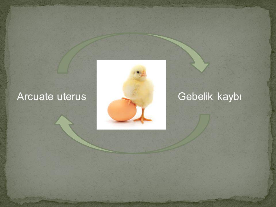 Arcuate uterusGebelik kaybı