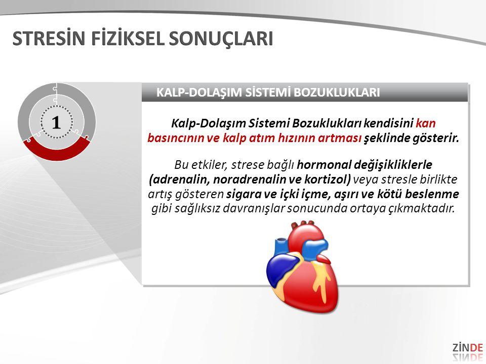 KALP-DOLAŞIM SİSTEMİ BOZUKLUKLARI Kalp-Dolaşım Sistemi Bozuklukları kendisini kan basıncının ve kalp atım hızının artması şeklinde gösterir. Bu etkile