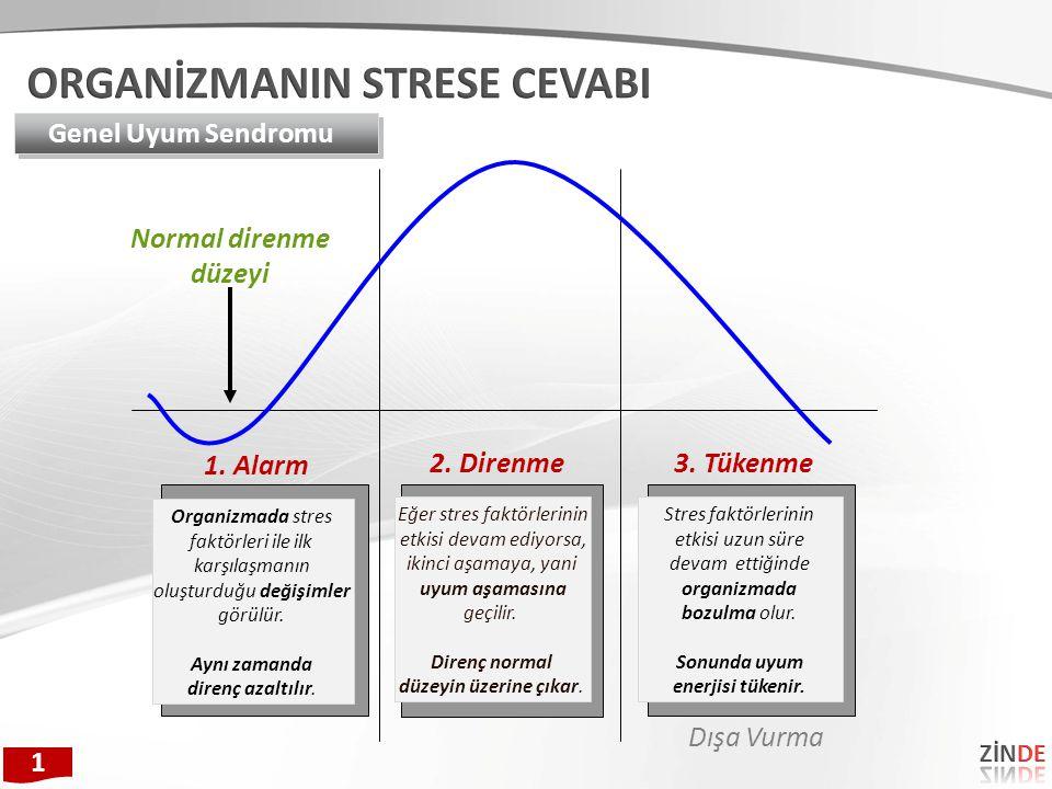 1. Alarm 2. Direnme3. Tükenme Organizmada stres faktörleri ile ilk karşılaşmanın oluşturduğu değişimler görülür. Aynı zamanda direnç azaltılır. Eğer s