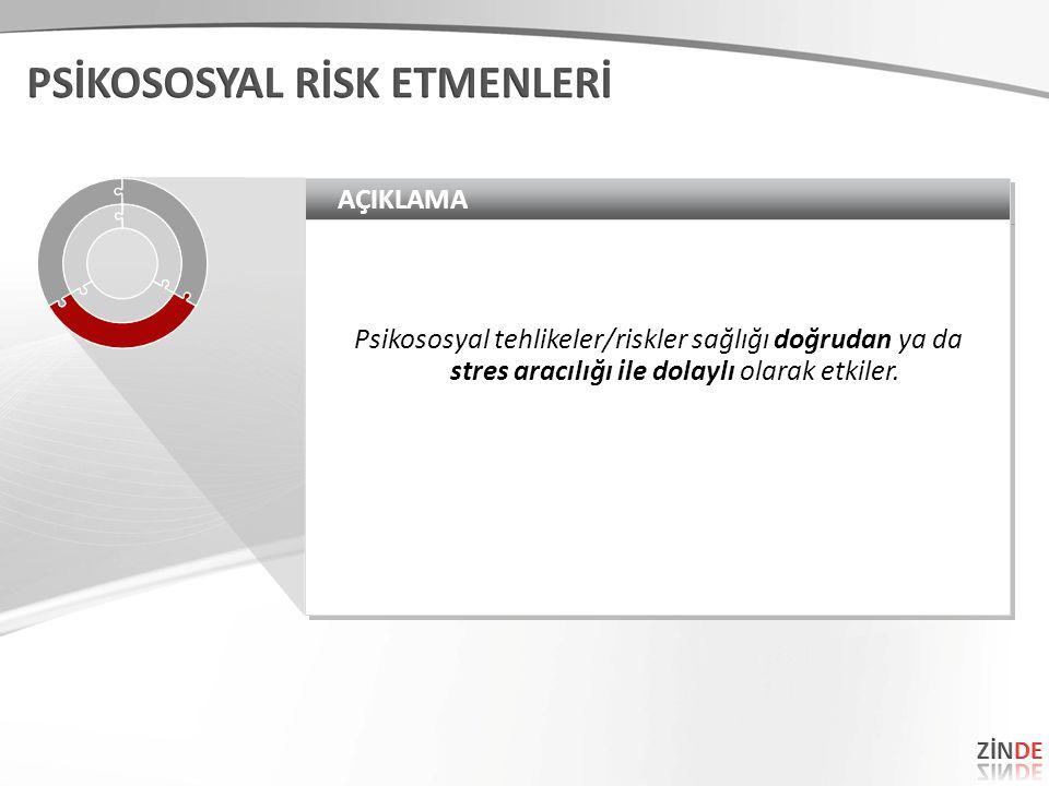 AÇIKLAMA Psikososyal tehlikeler/riskler sağlığı doğrudan ya da stres aracılığı ile dolaylı olarak etkiler.
