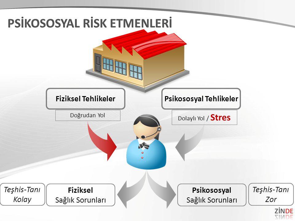 Fiziksel Sağlık Sorunları Psikososyal Sağlık Sorunları Fiziksel Tehlikeler Doğrudan Yol Psikososyal Tehlikeler Dolaylı Yol / Stres Teşhis-Tanı Zor Teş