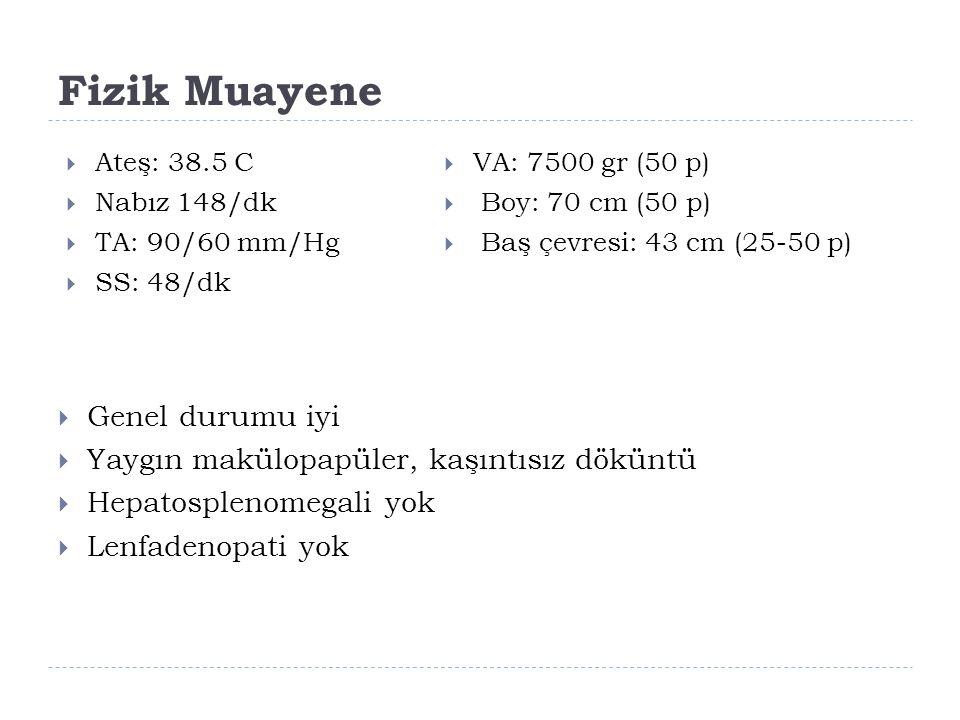 Fizik Muayene  Ateş: 38.5 C  Nabız 148/dk  TA: 90/60 mm/Hg  SS: 48/dk  VA: 7500 gr (50 p)  Boy: 70 cm (50 p)  Baş çevresi: 43 cm (25-50 p)  Genel durumu iyi  Yaygın makülopapüler, kaşıntısız döküntü  Hepatosplenomegali yok  Lenfadenopati yok