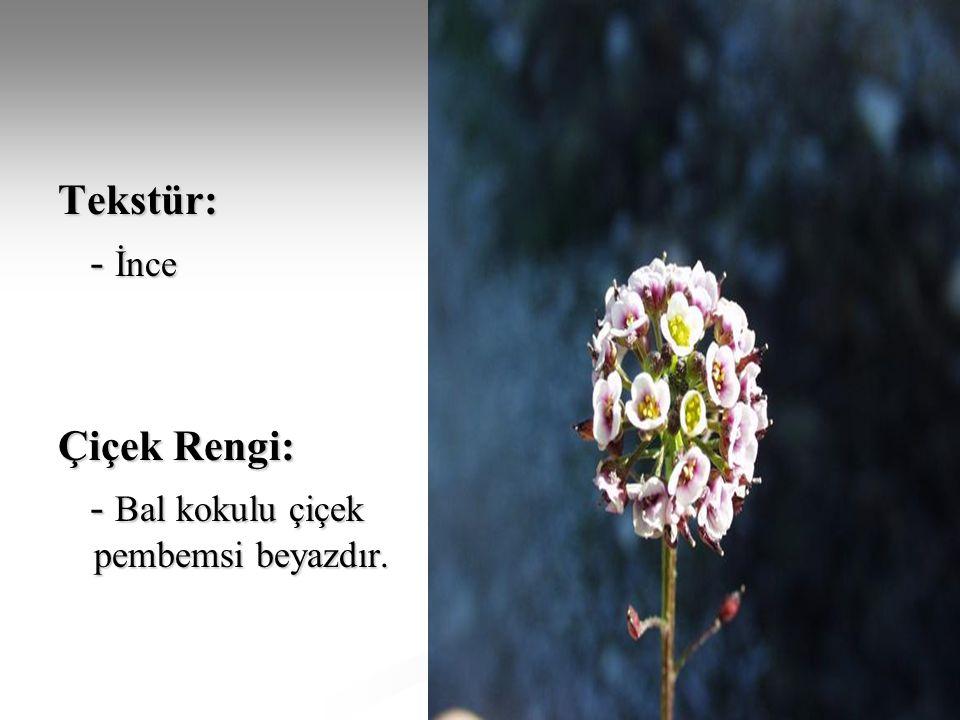 Tekstür: - İnce - İnce Çiçek Rengi: - Bal kokulu çiçek pembemsi beyazdır. - Bal kokulu çiçek pembemsi beyazdır.
