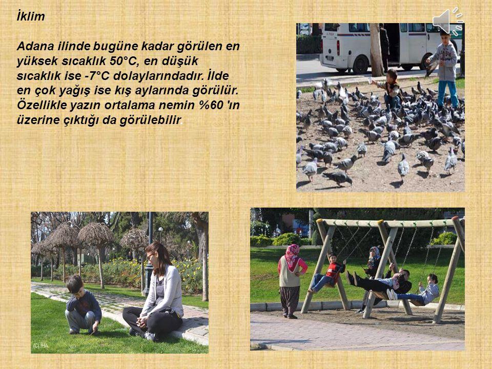 ADANA'DA TARIM Adana tarım bakımından çok zengindir.Birçok sebze ve meyveye ev sahipliği yapar.