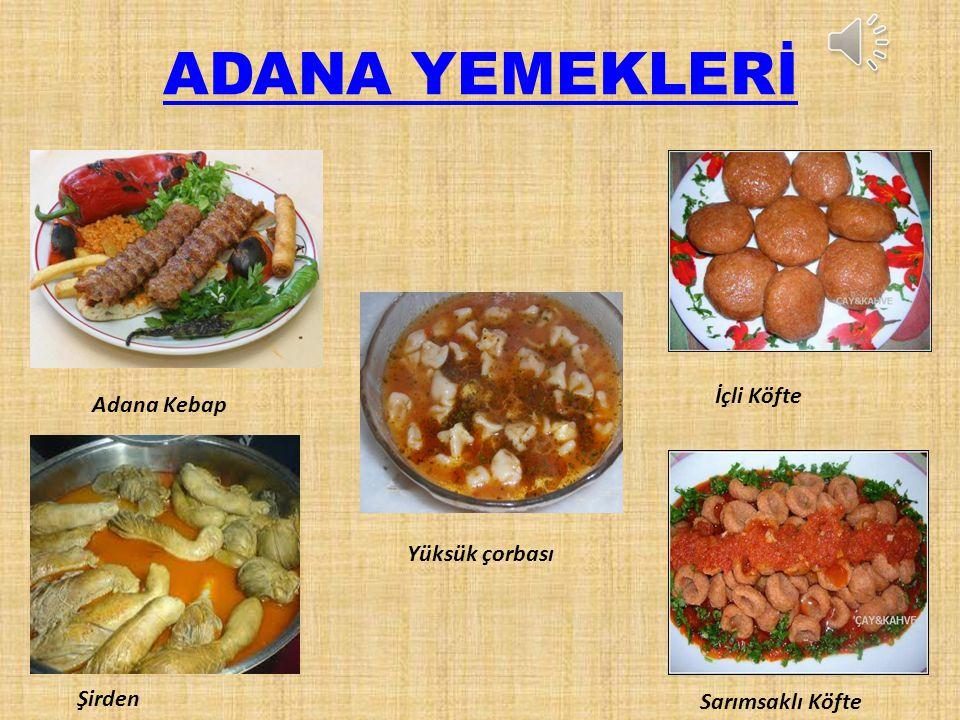 İklim Adana ilinde bugüne kadar görülen en yüksek sıcaklık 50°C, en düşük sıcaklık ise -7°C dolaylarındadır. İlde en çok yağış ise kış aylarında görül