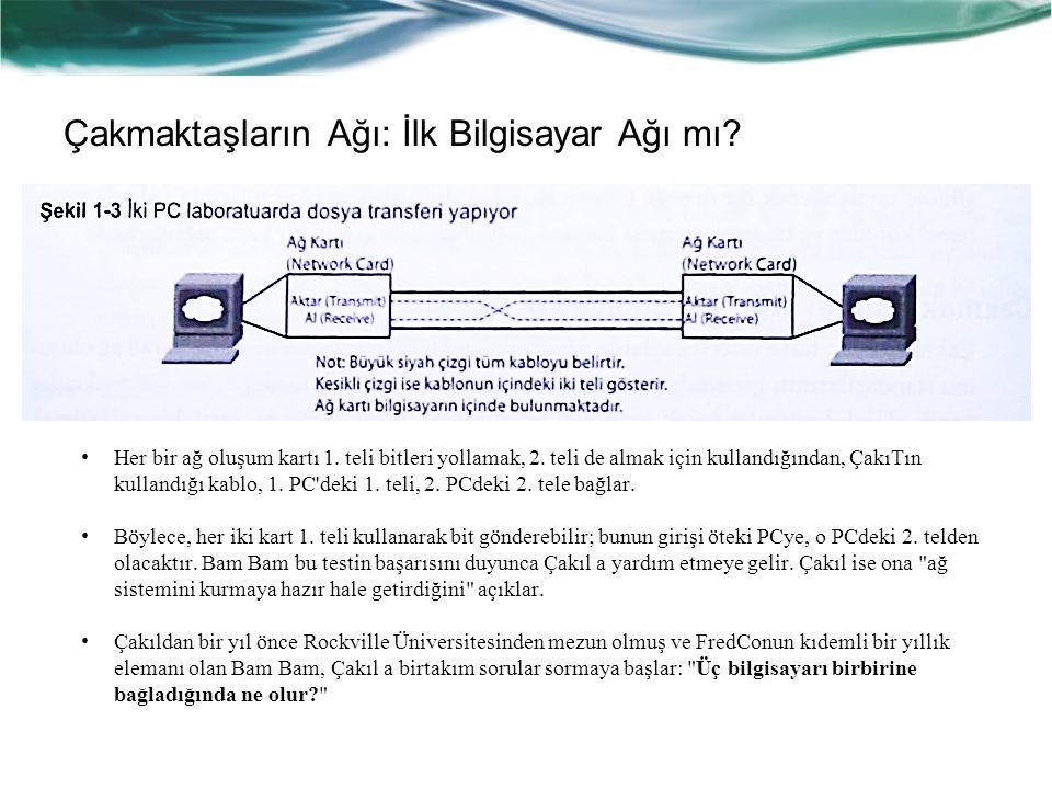 Çakmaktaşların Ağı: İlk Bilgisayar Ağı mı.Her bir ağ oluşum kartı 1.