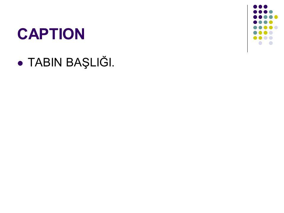 CAPTION TABIN BAŞLIĞI.