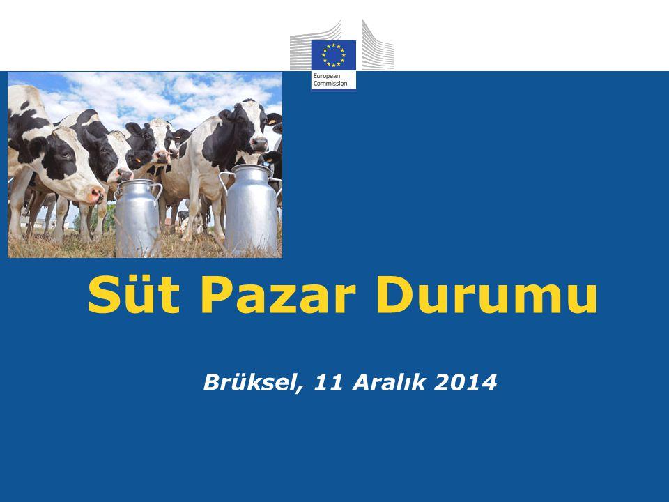 Süt Pazar Durumu Brüksel, 11 Aralık 2014