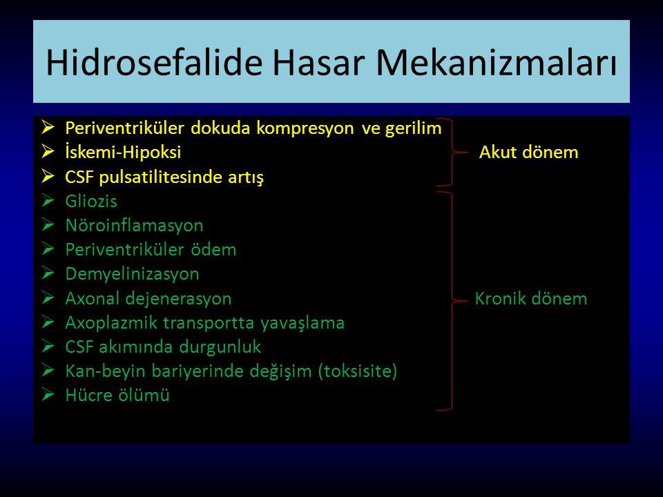 Hidrosefalide Hasar Mekanizmaları  Periventriküler dokuda kompresyon ve gerilim  İskemi-Hipoksi Akut dönem  CSF pulsatilitesinde artış  Gliozis 