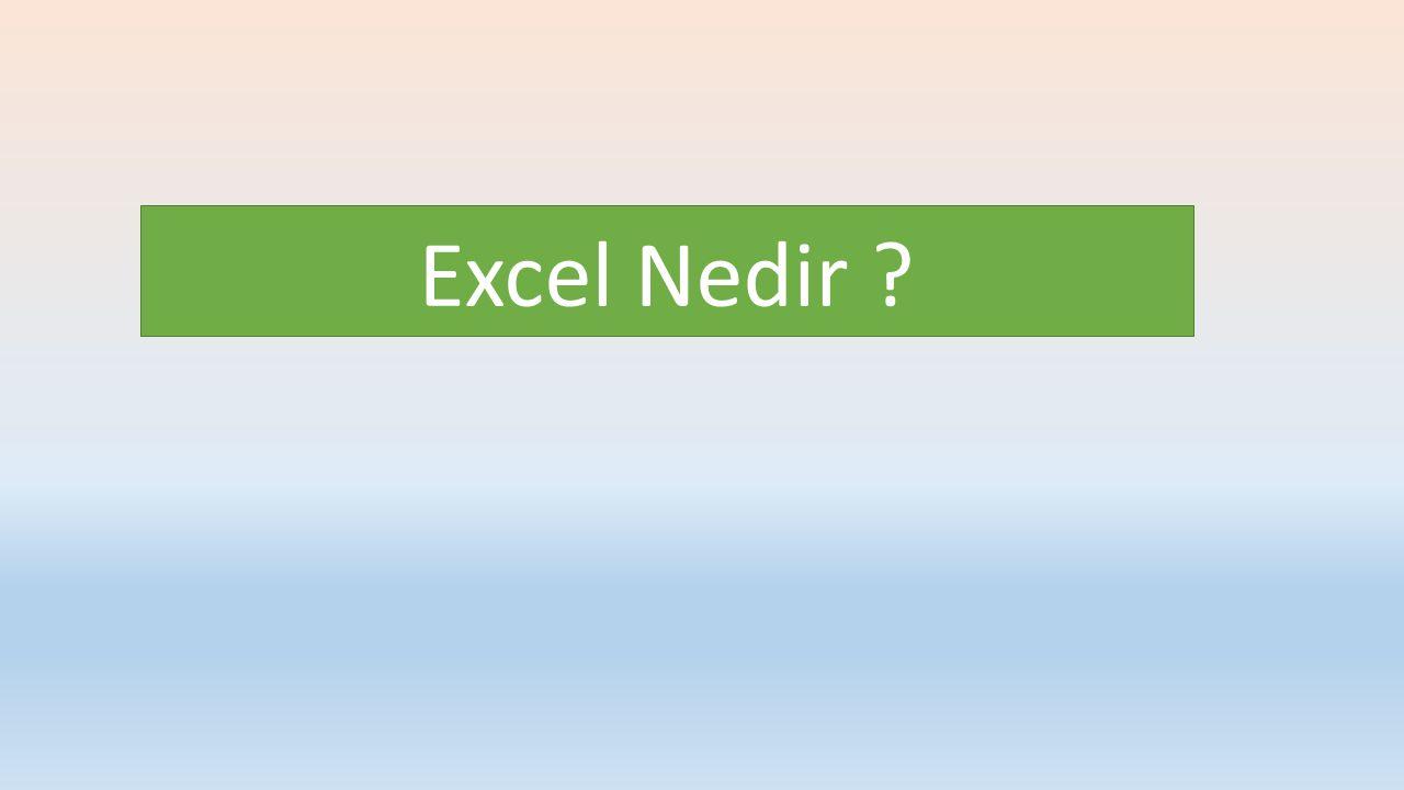 Excel Nedir ?