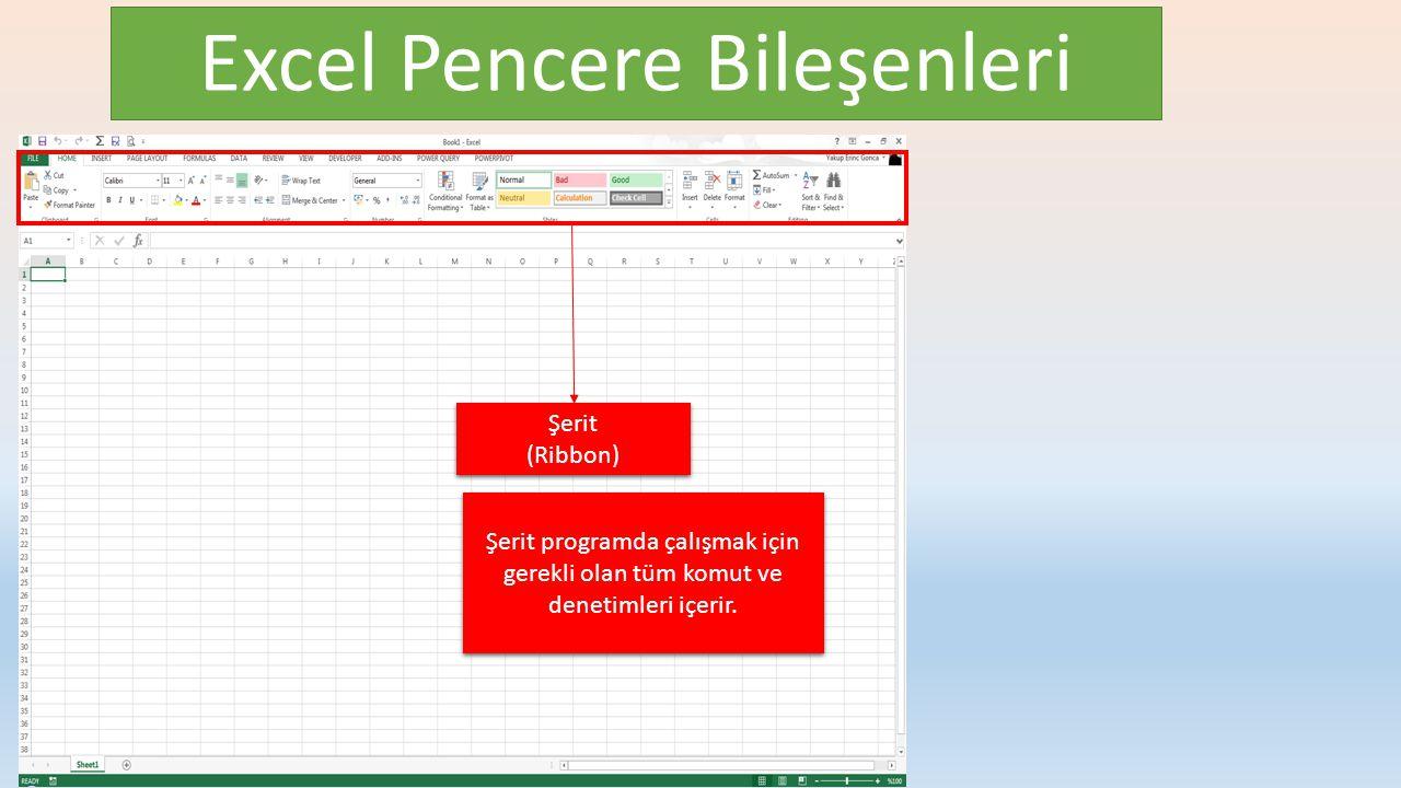 Excel Pencere Bileşenleri Şerit (Ribbon) Şerit (Ribbon) Şerit programda çalışmak için gerekli olan tüm komut ve denetimleri içerir.