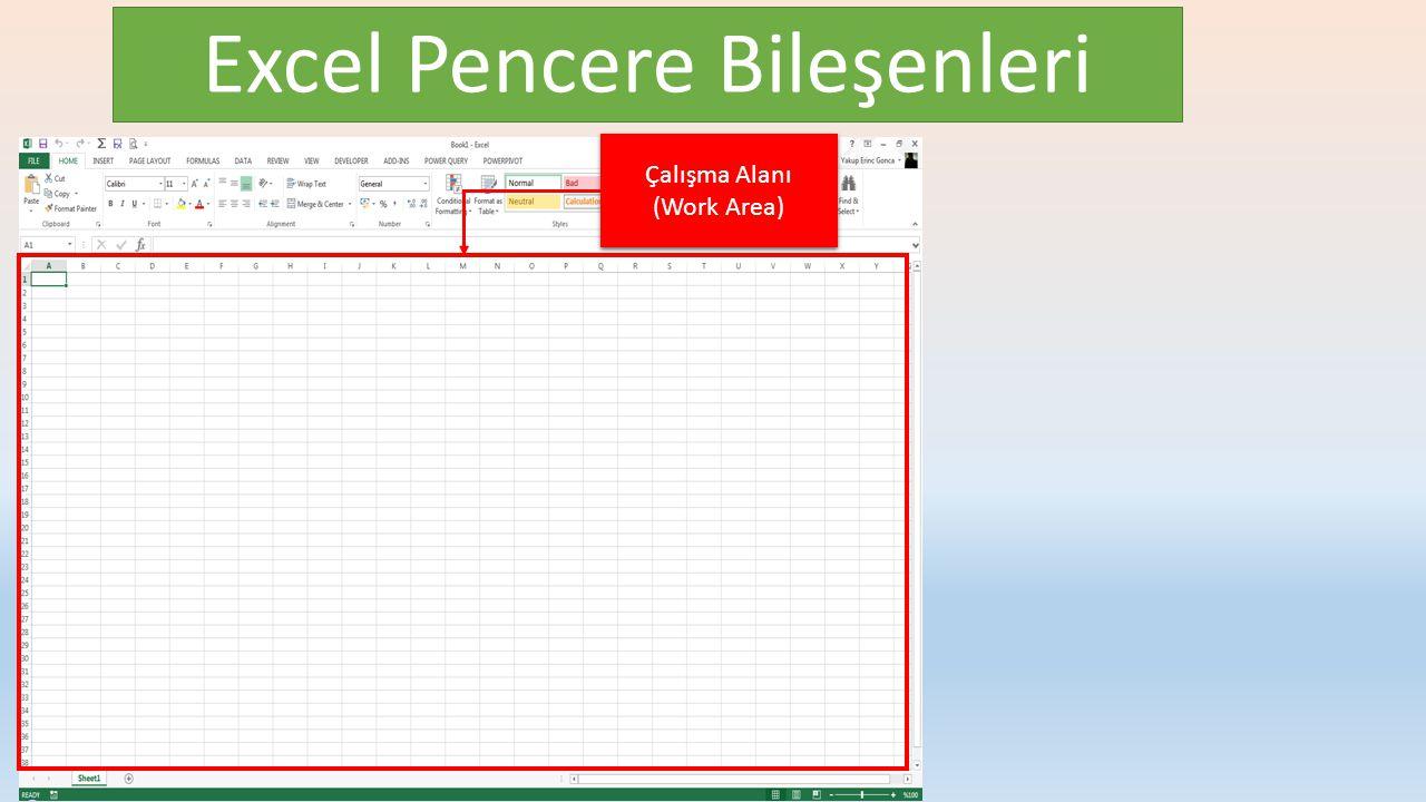 Excel Pencere Bileşenleri Çalışma Alanı (Work Area) Çalışma Alanı (Work Area)