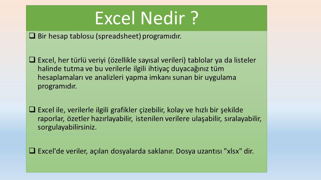  Bir hesap tablosu (spreadsheet) programıdır.  Excel, her türlü veriyi (özellikle sayısal verileri) tablolar ya da listeler halinde tutma ve bu veri