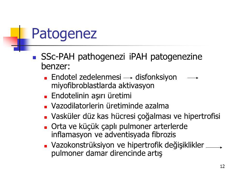 12 Patogenez SSc-PAH pathogenezi iPAH patogenezine benzer: Endotel zedelenmesi disfonksiyon miyofibroblastlarda aktivasyon Endotelinin aşırı üretimi Vazodilatorlerin üretiminde azalma Vasküler düz kas hücresi çoğalması ve hipertrofisi Orta ve küçük çaplı pulmoner arterlerde inflamasyon ve adventisyada fibrozis Vazokonstrüksiyon ve hipertrofik değişiklikler pulmoner damar direncinde artış