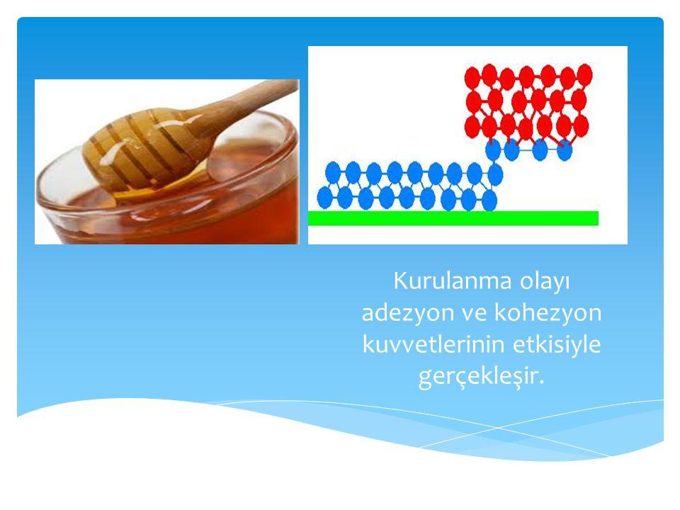 Kurulanma olayı adezyon ve kohezyon kuvvetlerinin etkisiyle gerçekleşir.