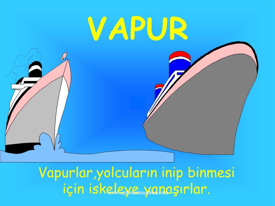 YELKENLİ Yelkenli,rüzgarın gücünden yararlanır. www.egitimcininadresi.com