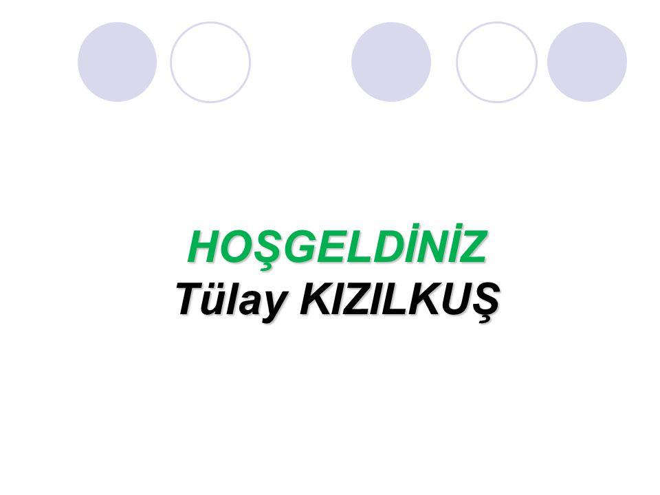 Turizm Meslek Lisesi Ali Güven Mesleki ve Teknik Anadolu Lisesi