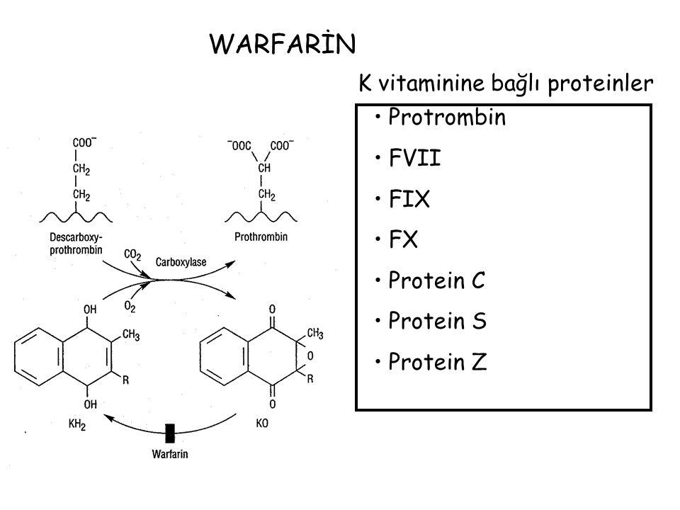 K vitaminine bağlı proteinler Protrombin FVII FIX FX Protein C Protein S Protein Z WARFARİN