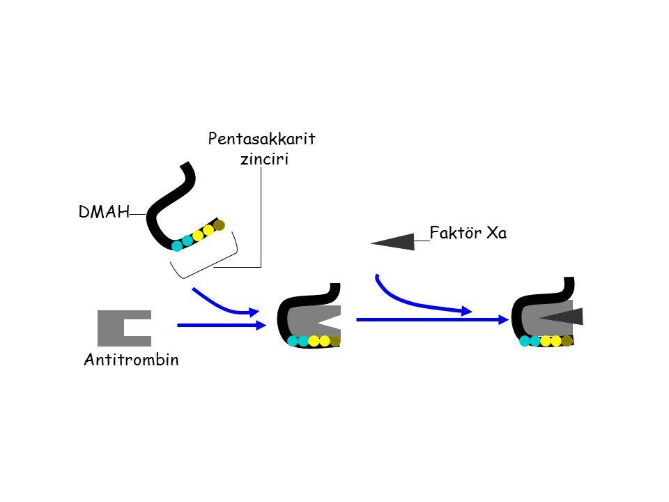 Antitrombin Faktör Xa Pentasakkarit zinciri DMAH