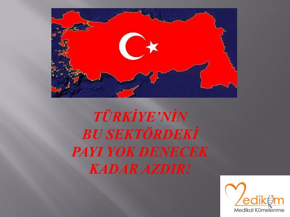 TÜRKİYE'NİN BU SEKTÖRDEKİ PAYI YOK DENECEK KADAR AZDIR!