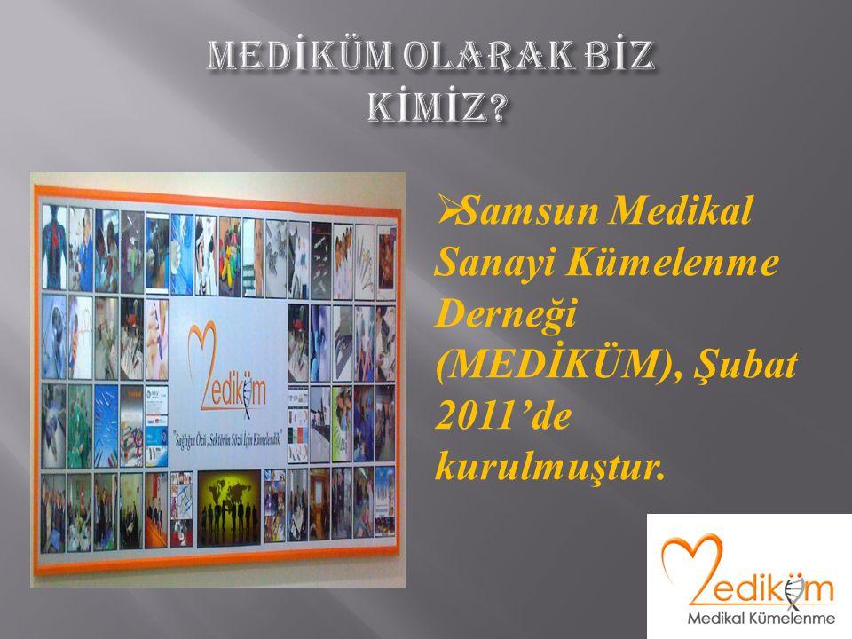  Samsun Medikal Sanayi Kümelenme Derneği (MEDİKÜM), Şubat 2011'de kurulmuştur.