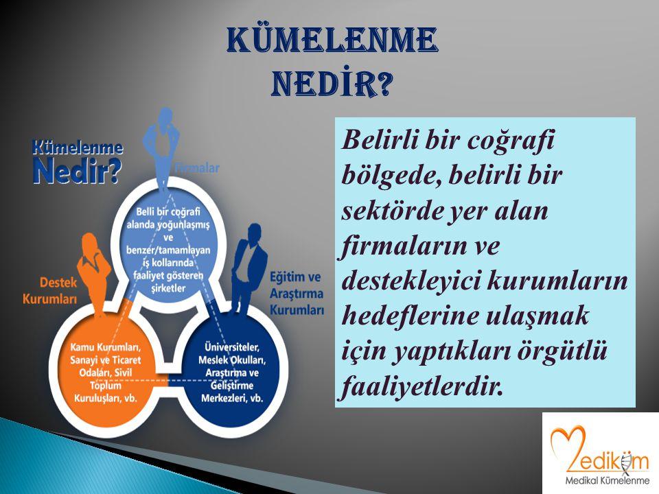 Belirli bir coğrafi bölgede, belirli bir sektörde yer alan firmaların ve destekleyici kurumların hedeflerine ulaşmak için yaptıkları örgütlü faaliyetlerdir.