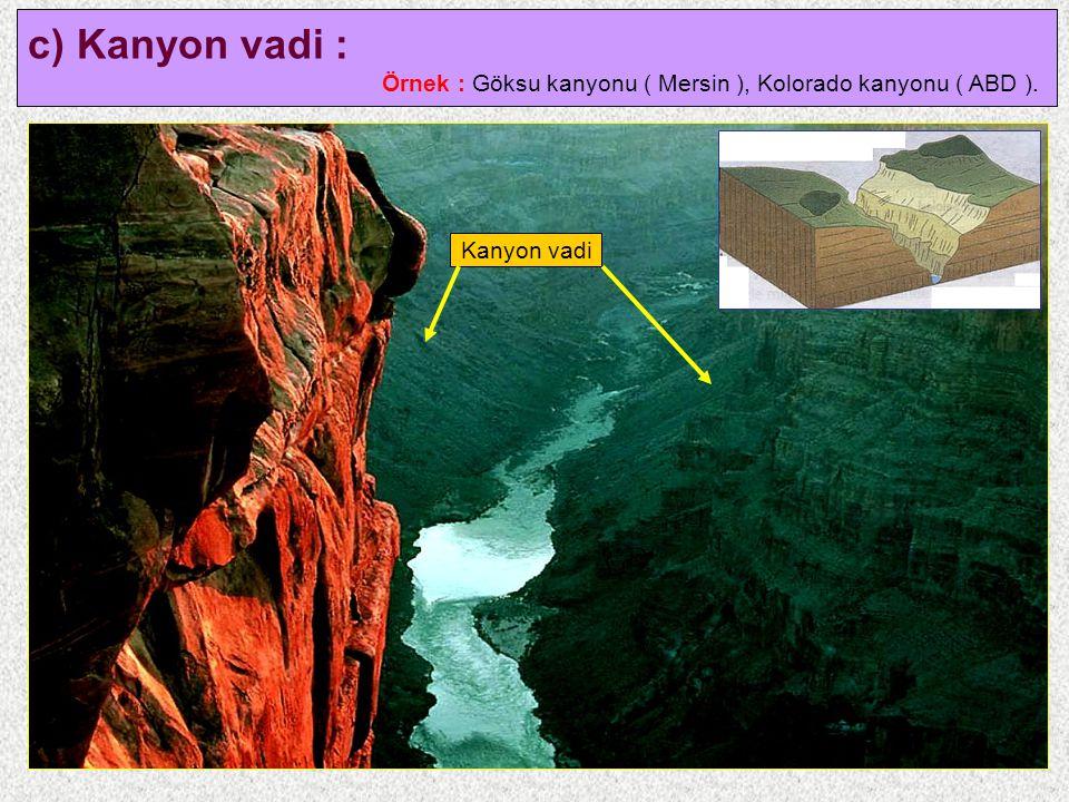 10 c) Kanyon vadi : Örnek : Göksu kanyonu ( Mersin ), Kolorado kanyonu ( ABD ). Kanyon vadi