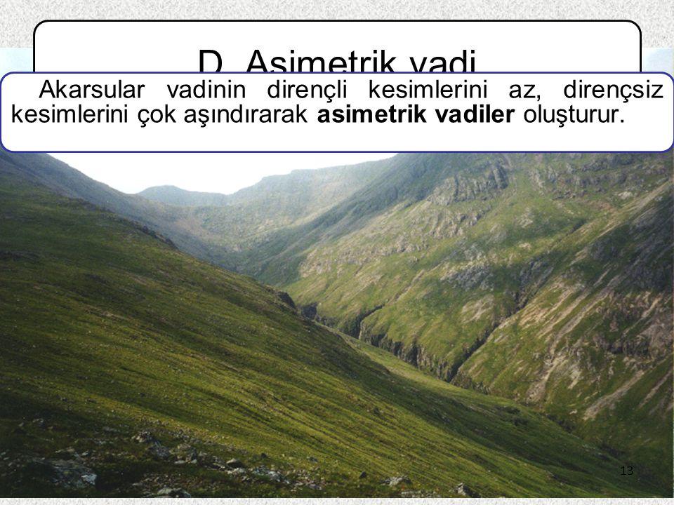 13 D. Asimetrik vadi Akarsular vadinin dirençli kesimlerini az, dirençsiz kesimlerini çok aşındırarak asimetrik vadiler oluşturur. 13